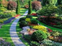 Принципы обустройства участка и варианты ландшафтного дизайна