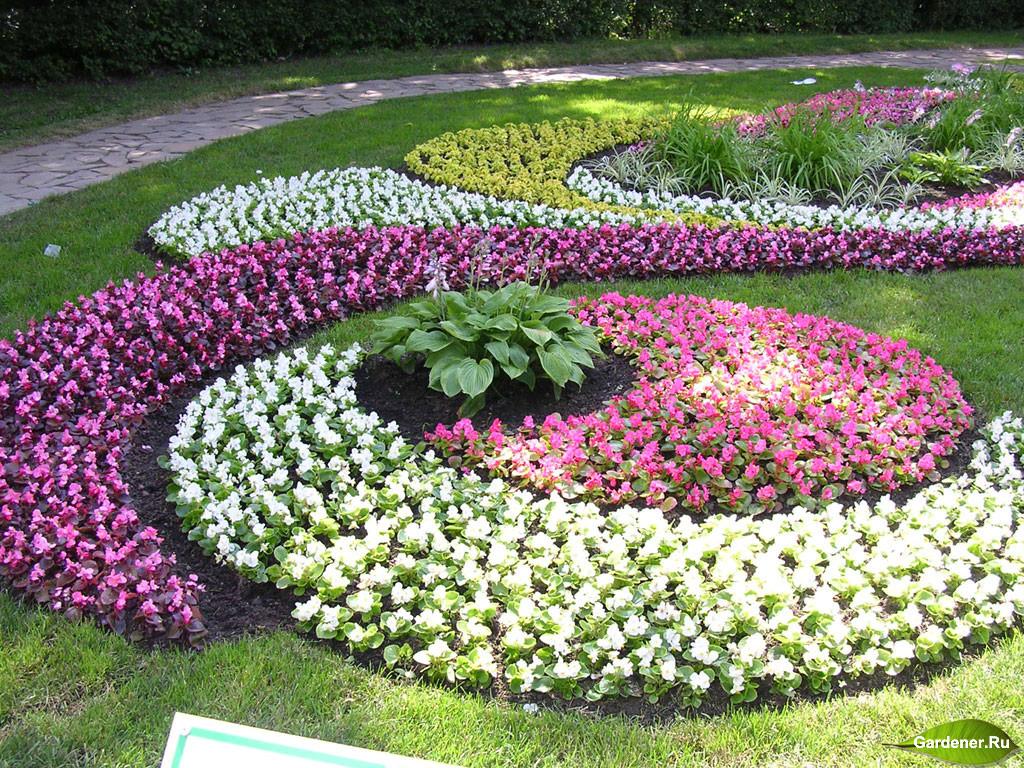 Декоративные цветники своими руками фото 853
