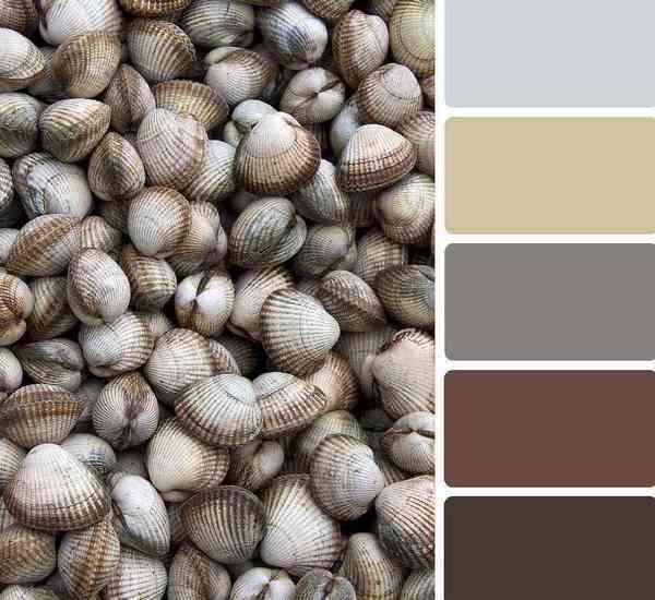 Хайтековские-цвета-и-оттенки