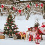 Идея новогоднего украшения двора