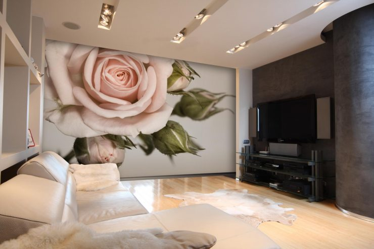Изображение бутона розы на фотообоях
