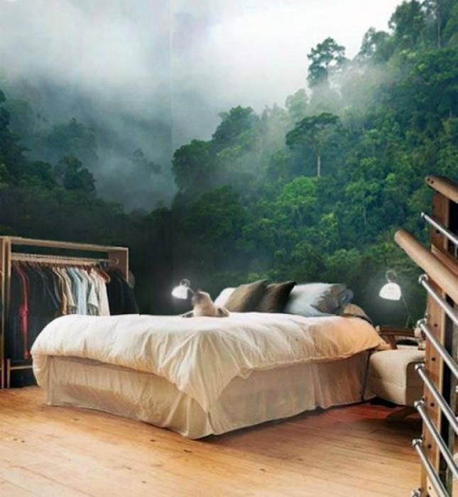 Изображение туманного леса на фотообоях