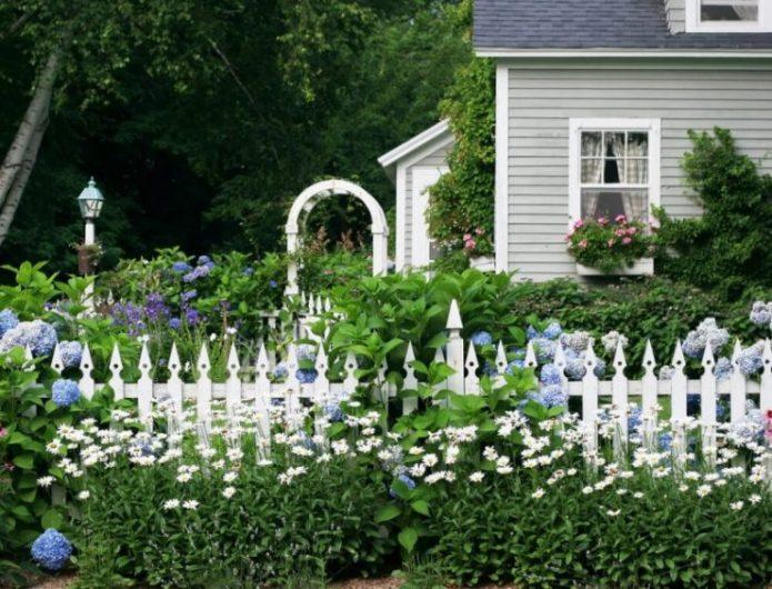 Озеленный двор у дома