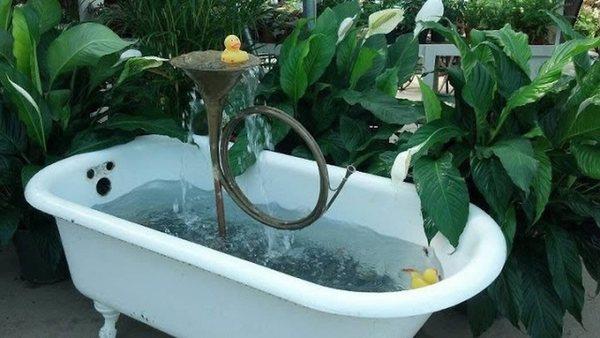 Фонтан из ванны и трубы-рожка