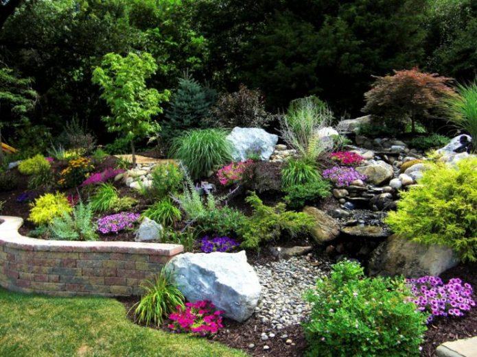 Альпинарий с разнорослыми растениями