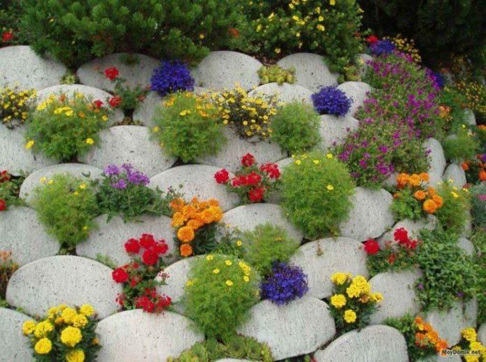Альпийская горка с пестрыми цветами
