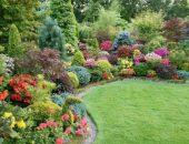 Ландшафтный дизайн с декоративными кустарниками