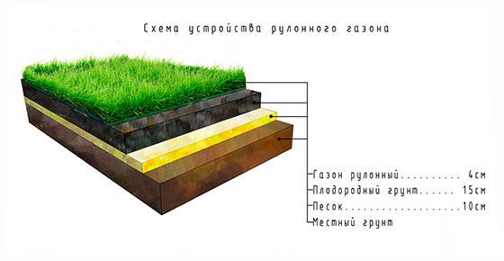 Схема слоев рулонного газона
