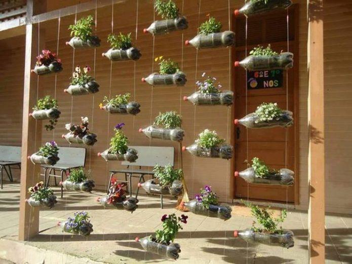 Вертикальное озеленение с помощью пластиковых бутылок