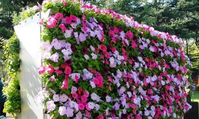 Вертикальное озеленение в саду