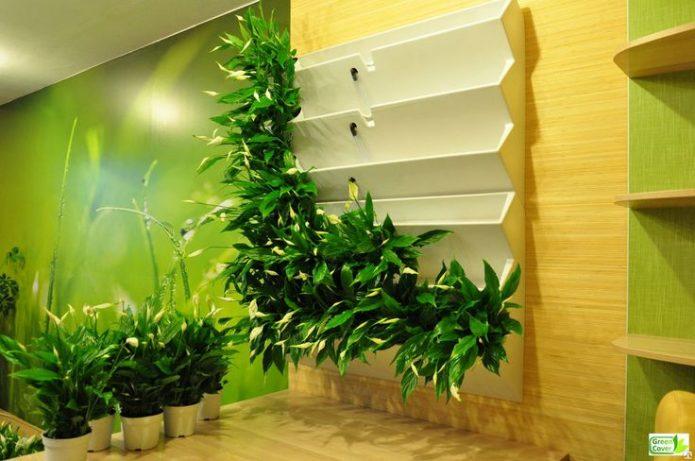 Вертикальное озеленение с помощью контейнеров