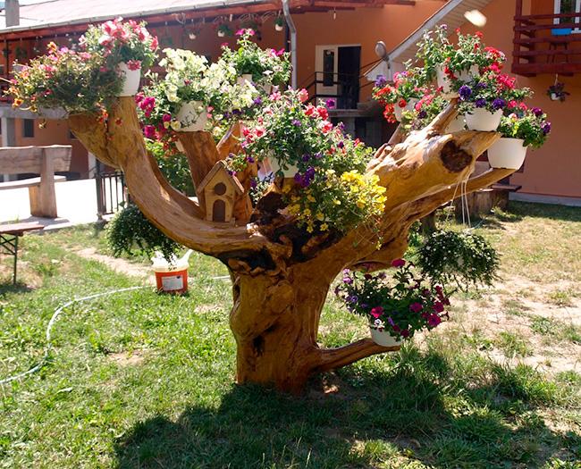 Старое засохшее дерево как элемент декора