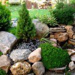 Каменный сад в ландшафтном дизайне