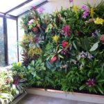 Стена с живыми цветами