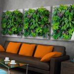 Картины из живых растений в интерьере