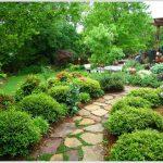 Сочетание камня и зелени в садовой дорожке