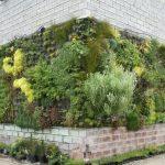 Вертикальная композиция из растений