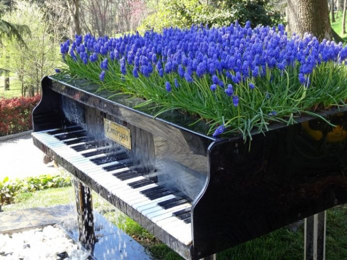 Клумба на фортепиано