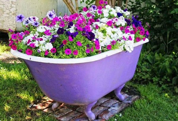 Цветочная клумба в ванне