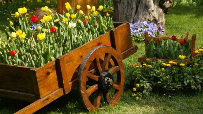 Клумба из тюльпаной в деревянной тележке