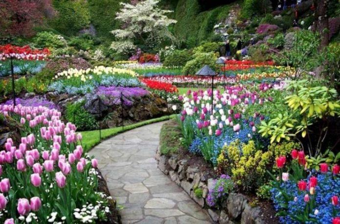 Цветочный сад Будхарт в Колумбии